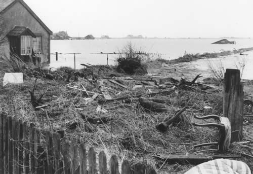 The marsh behind Ferry Road showing furniture and effects swept out of homes