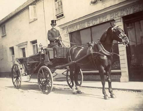 Horse and trap outside Adnams in about 1900